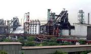 Cement Plant & Power Plant New Project Opening For 0 To 30 Yrs Exp